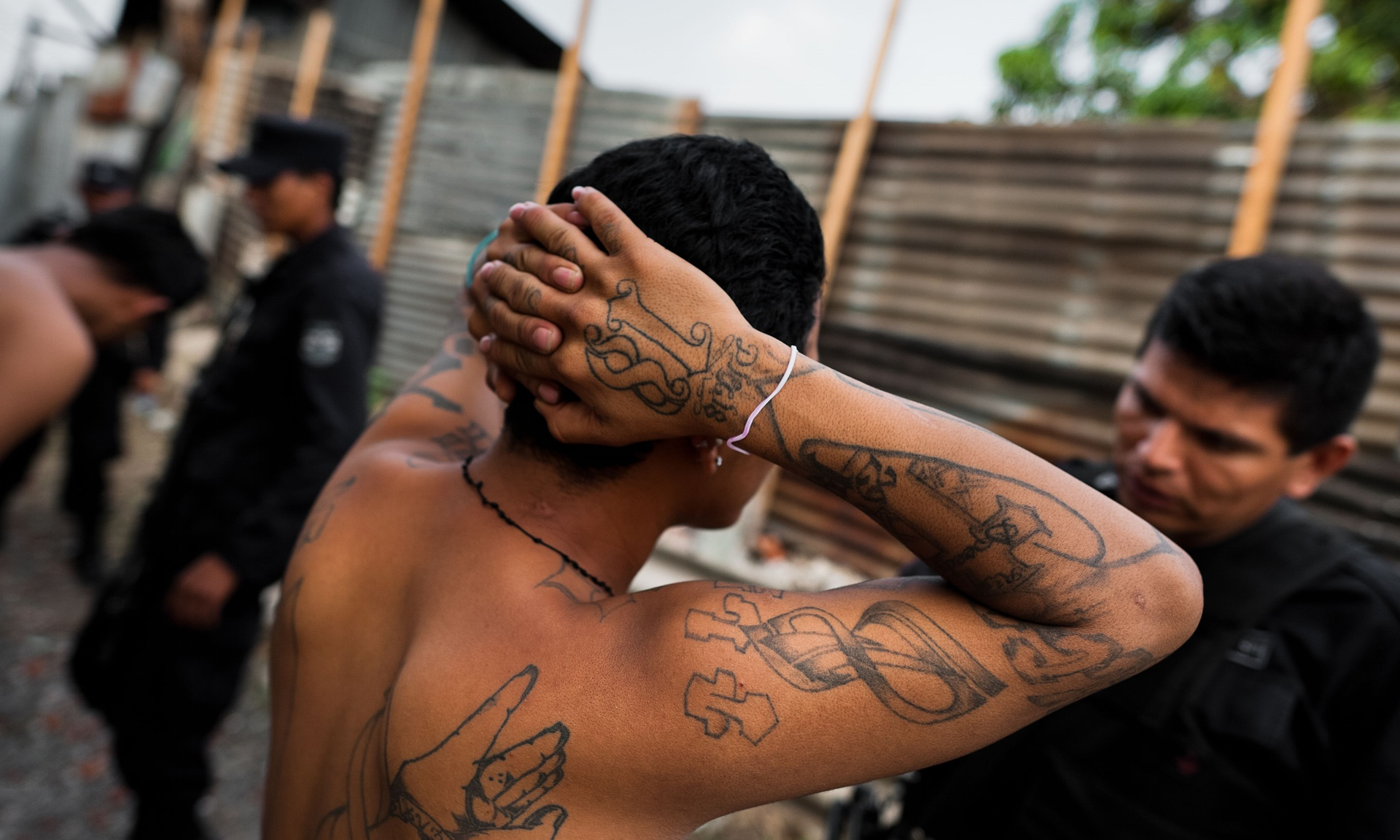 an examination of gangs and their crimes Chicago police attributed 75 percent of homicides in the city in 2015 and 2016 to altercations — most involving street gangs, according to the university of chicago crime lab draft report.