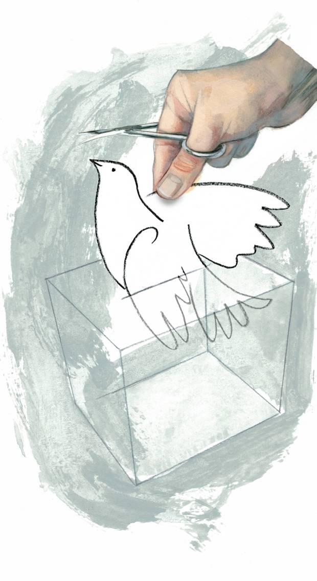 Ilustración: FERNANDO VICENTE